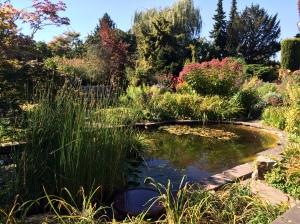 Teich im Förstergarten